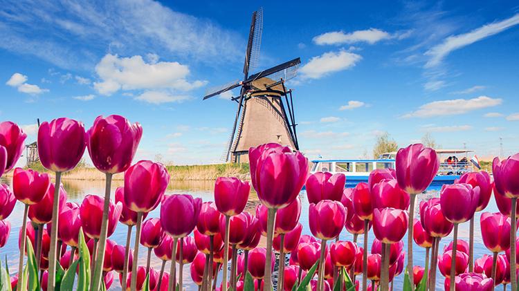 Keukenhof and Amsterdam